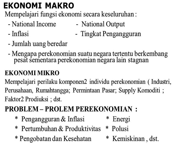 Fungsi Ekonomi Makro