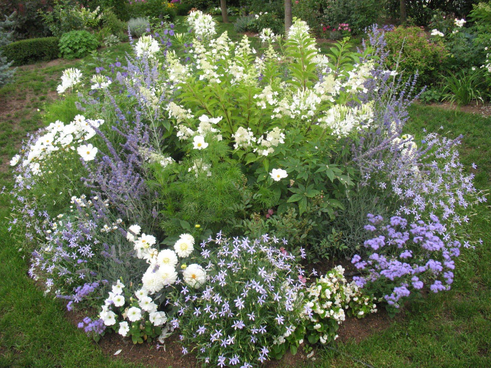 idées massif fleurs