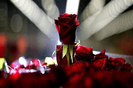 puisi tentang rindu terdalam