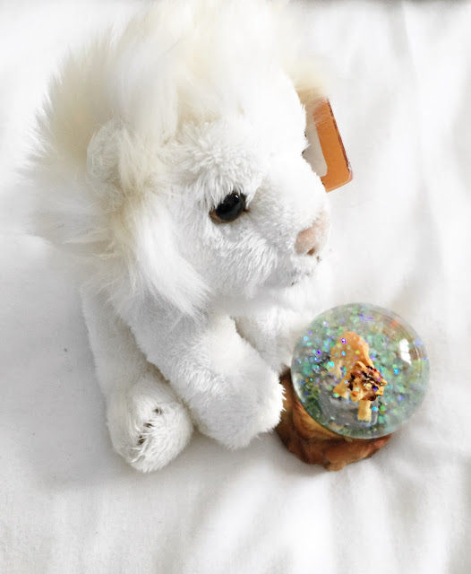 white lion, west midlands safari park, snow globe, lions, wildlife, endangered animals, teddy, soft toy,