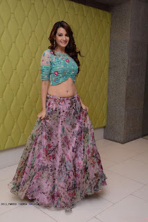 Diksha Panth Spicy Choli and Skirt Stunning Pics