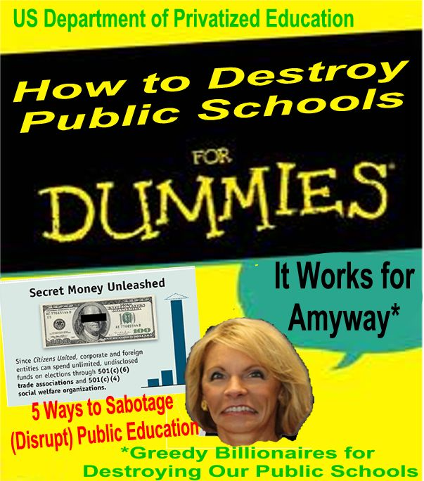 Image result for betsy devos 's voucher schools