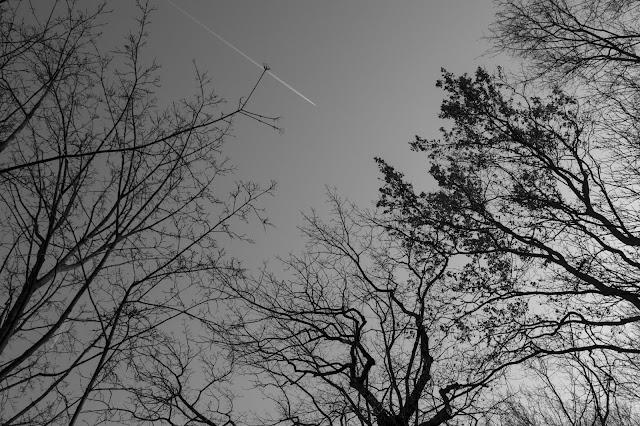 Verso il parco Tiergarten-Berlino