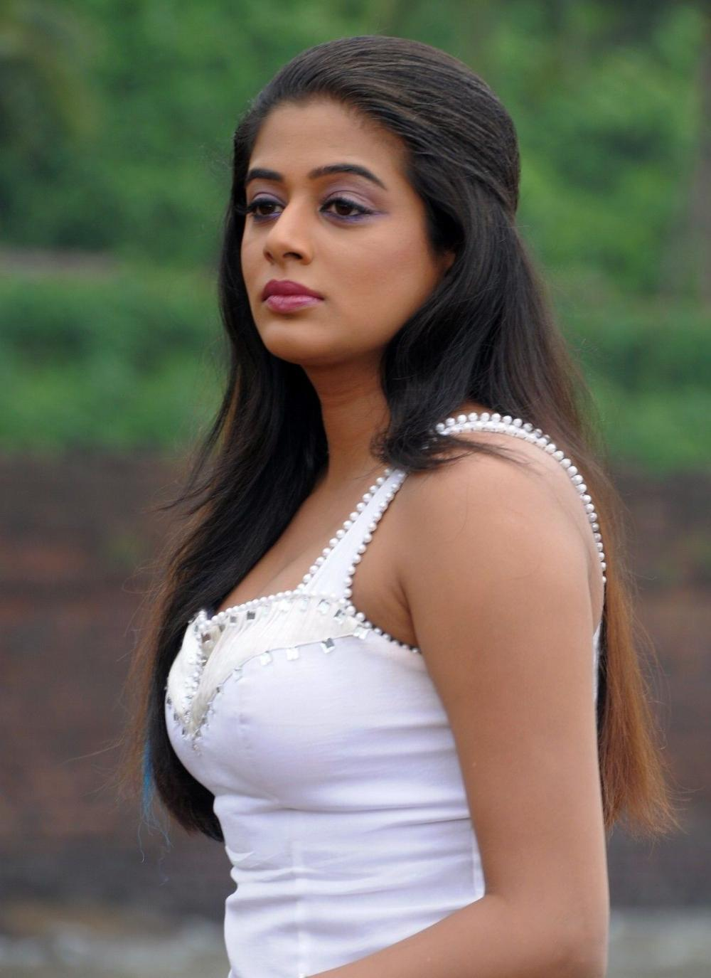 Actress Priyamani 21 Best Looking Hd Photos Download -4993