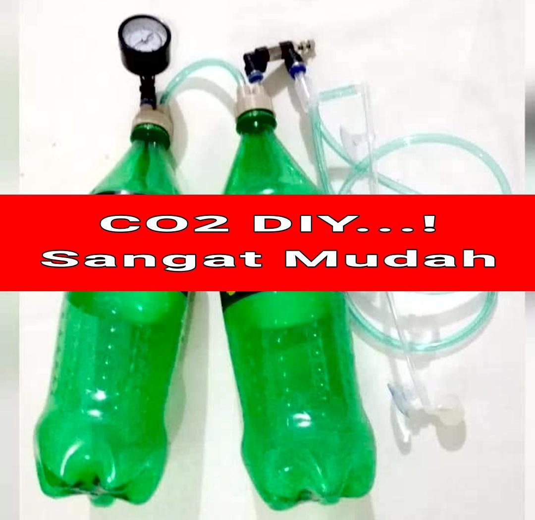 Cara Membuat CO2 Aquascape DIY Murah, Mudah dan Tahan Lama ...