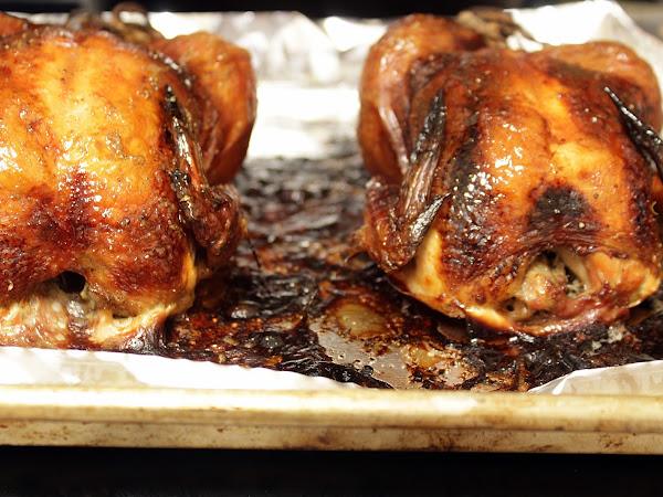 Forgotten freezer treasures (Brined Citrus spiced cornish hens)