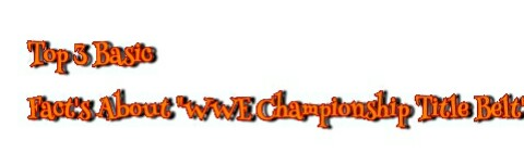 "Top 3 Basic Fact's About ""WWE Championship Title Belt"""