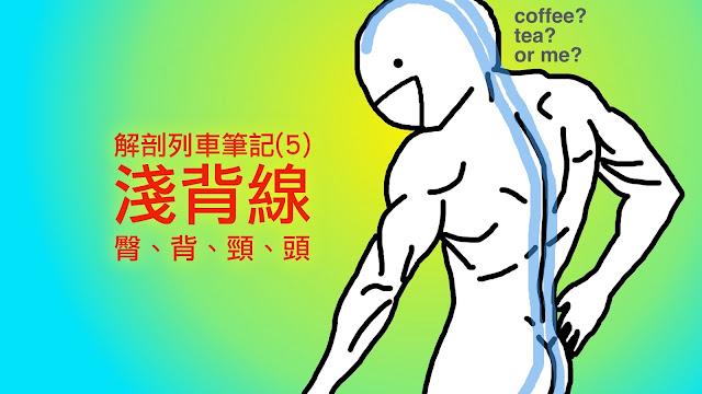 好痛痛 解剖列車筆記 筋膜 淺背線 坐骨粗隆 背部 脊椎 頸部 頭部 活動度 運動