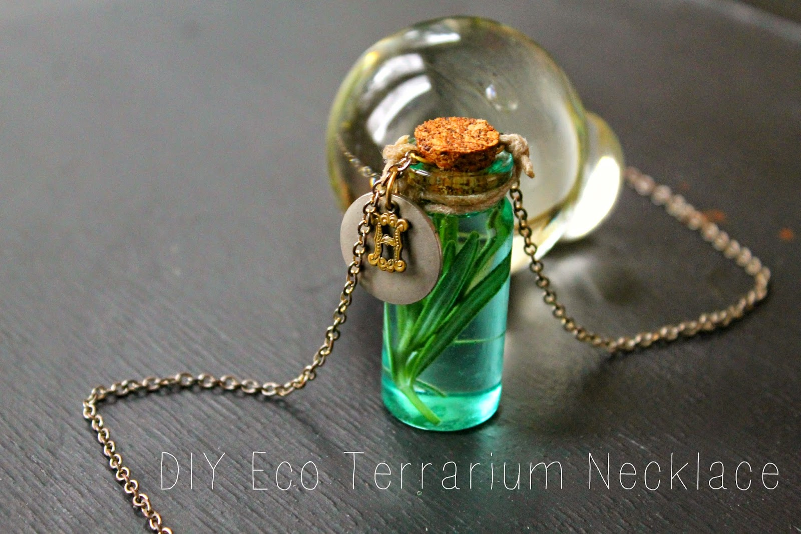 DIY Eco Terrarium Necklace