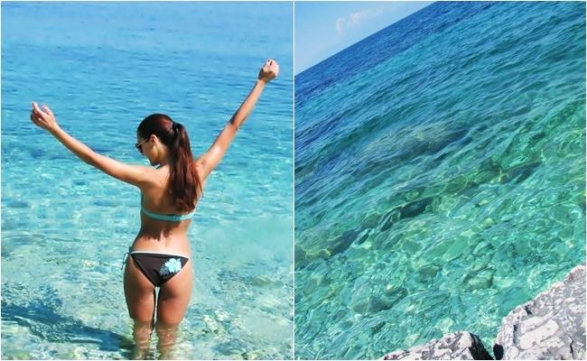 brown turquoise bikini