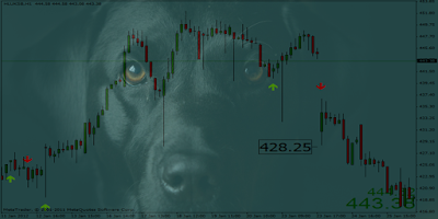 Black dog forex review