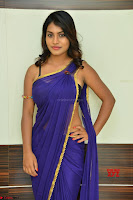 Actress Priya in Blue Saree and Sleevelss Choli at Javed Habib Salon launch ~  Exclusive Galleries 002.jpg