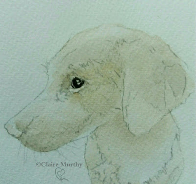 dog sketches kent sussex surrey london. drawing classes.