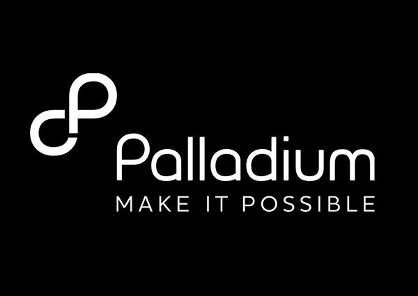 Image result for Palladium tz