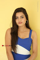 Cute Telugu Actress Shipra Gaur High Definition Po Gallery in Short Dress  0261.JPG
