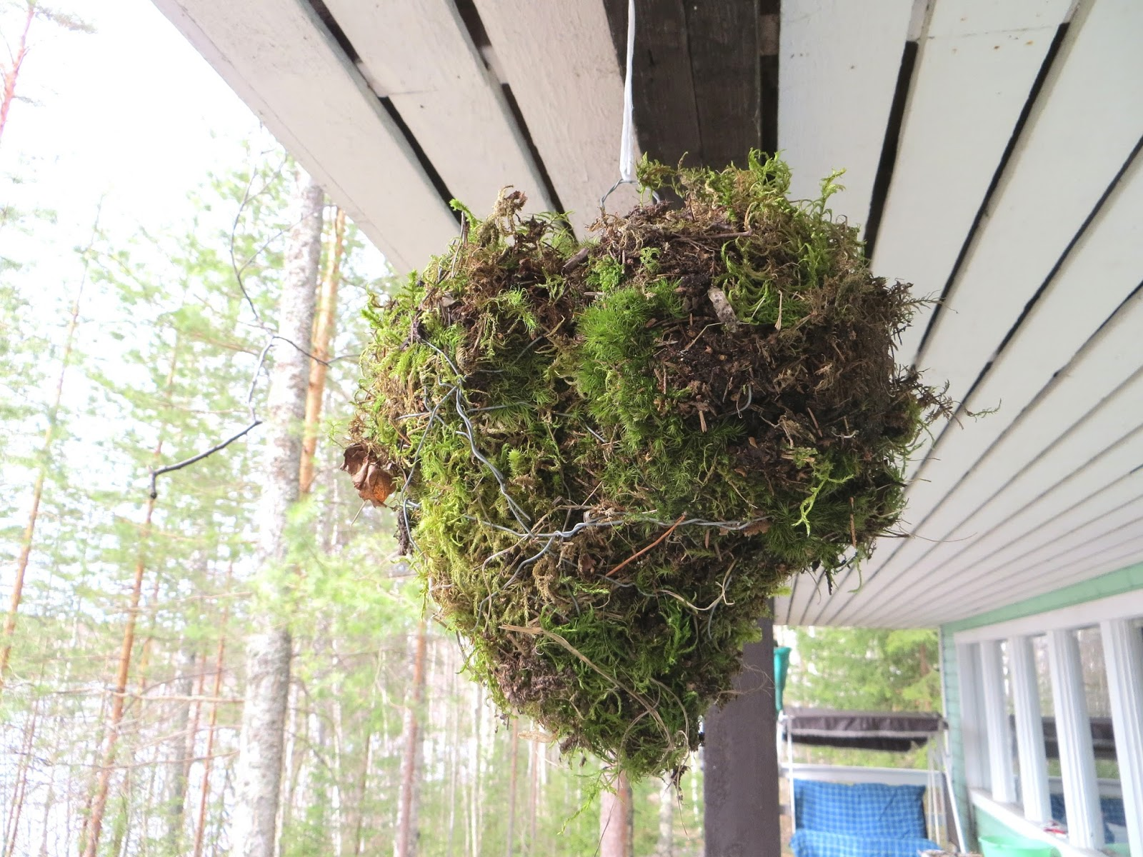 moss heart decoration