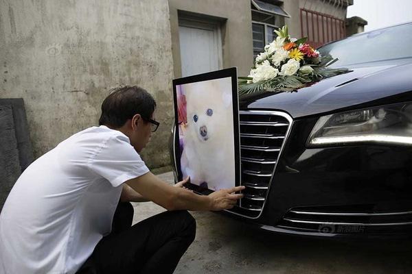 """Lễ tang long trọng của chú cún cưng """"con nhà giàu"""""""