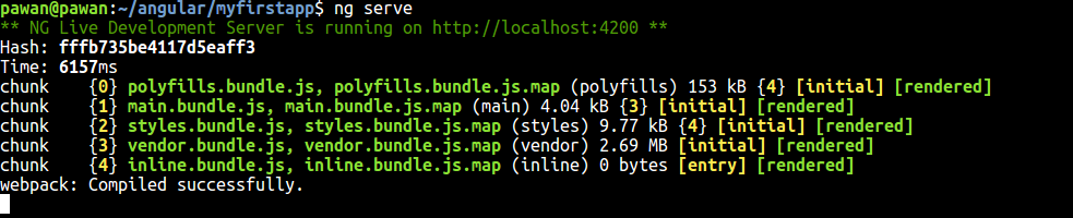 install angular cli globally linux