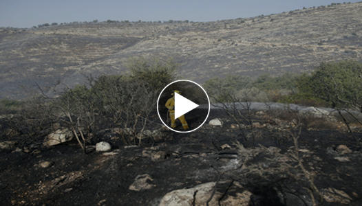 #بالفيديو : تعرف علي خسائر الكيان الصهيوني بعد استمرار الحرائق لمدة اكثر من 5 ايام