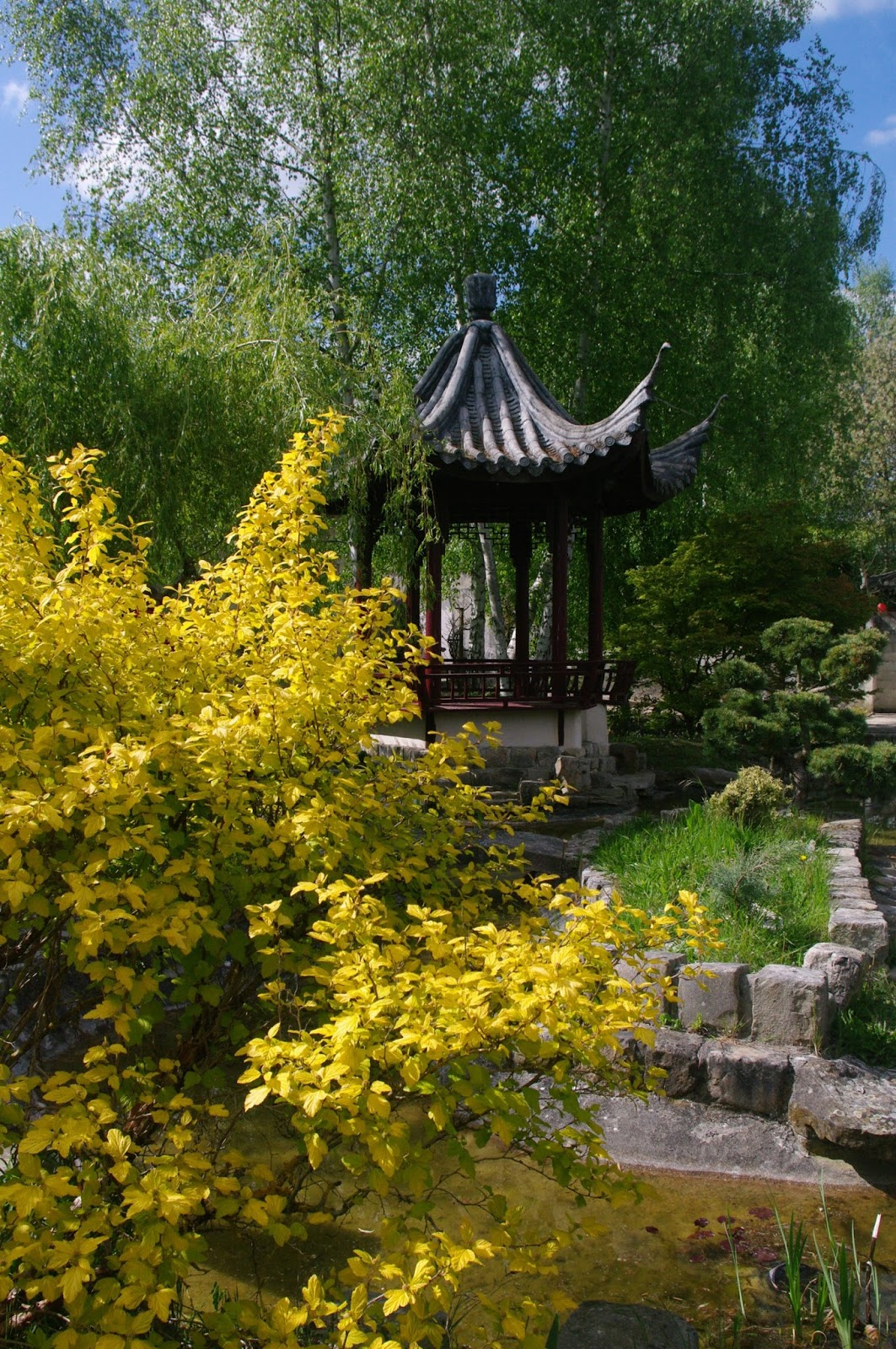 Nos randonnees 23 4 17 visite guidee du jardin chinois for Perspective jardin 78