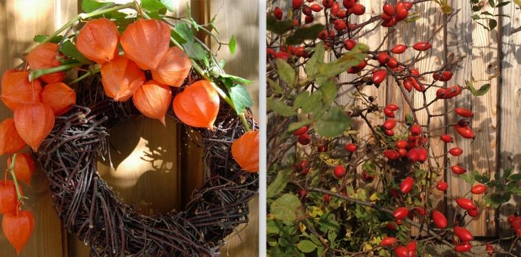 Hagebutten, Lampionblumen Deko für den Herbst