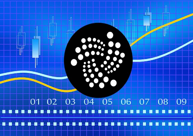 IOTA Price Momentum Remains Elusive