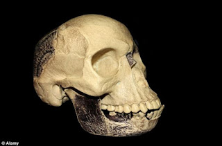 Unmasked The truth behind Piltdown Man fraud to be revealed 100 years after it fooled the world.