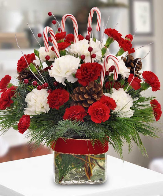 Red Carnations and Candy Canes.