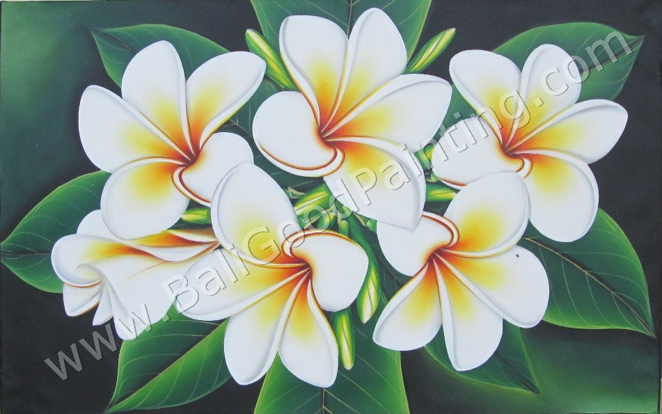 Lukisan Bunga 77 Lukisan Bunga Kamboja Asli Bali Fp 048