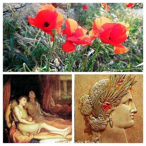 Czerwone maki. Bogowie: Sen i Śmierć. Bogini Demetra.