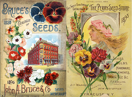 Vintage Seed Company catalogs