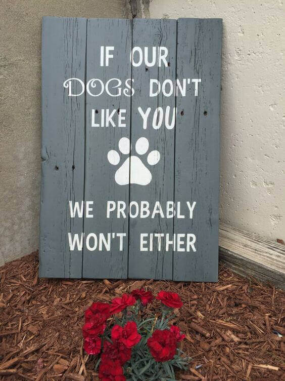 If our dogs don't like you we probably won't either