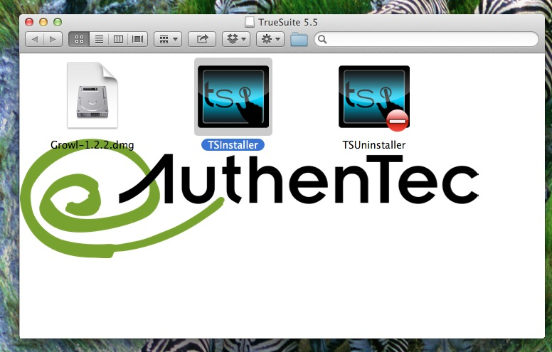 Windows and Android Free Downloads : Authentec Truesuite