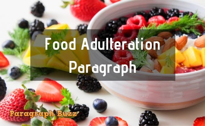 Food Adulteration Paragraph for School Kids