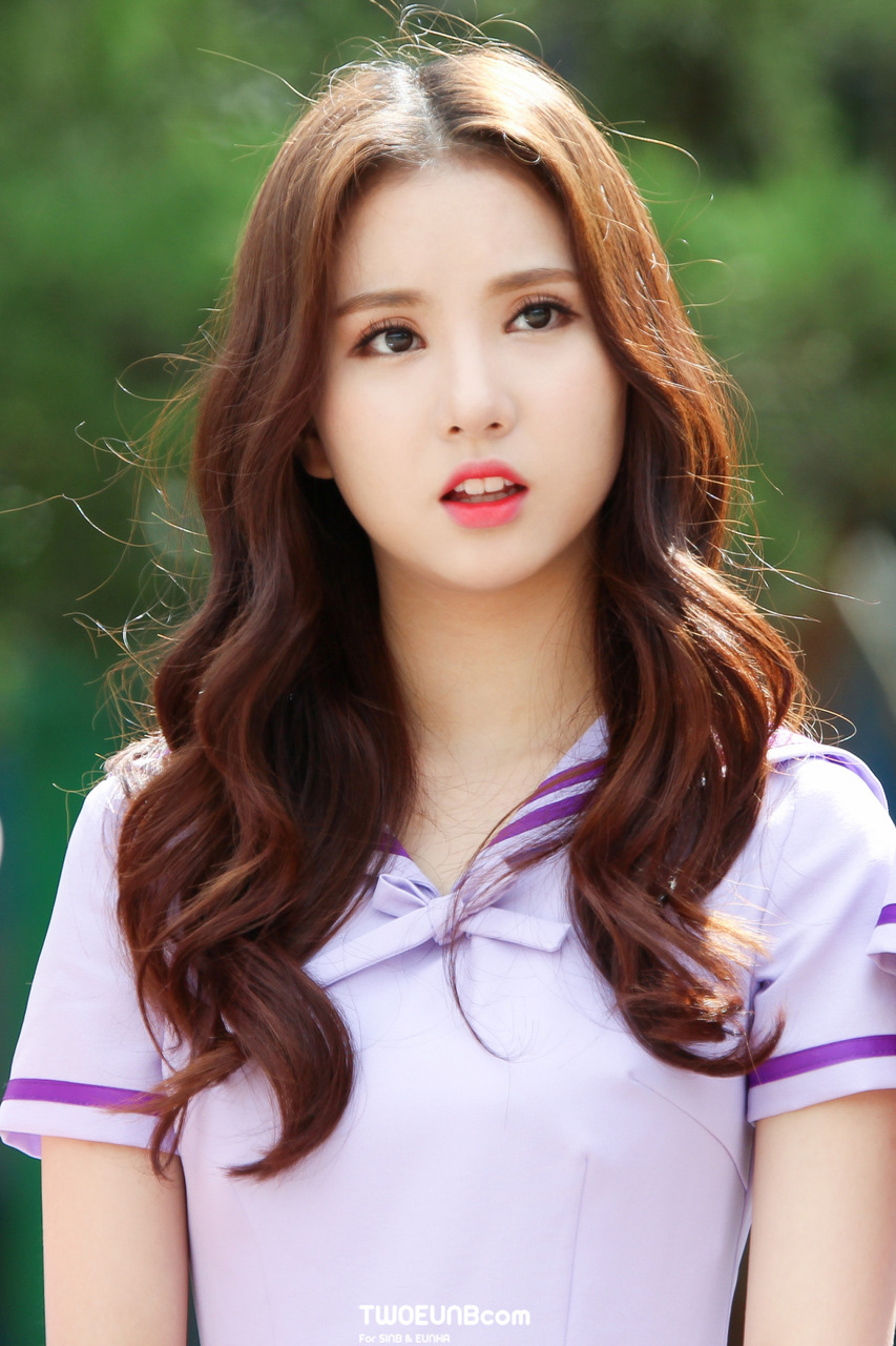Kpop: Tiny Kpop Idol Profile