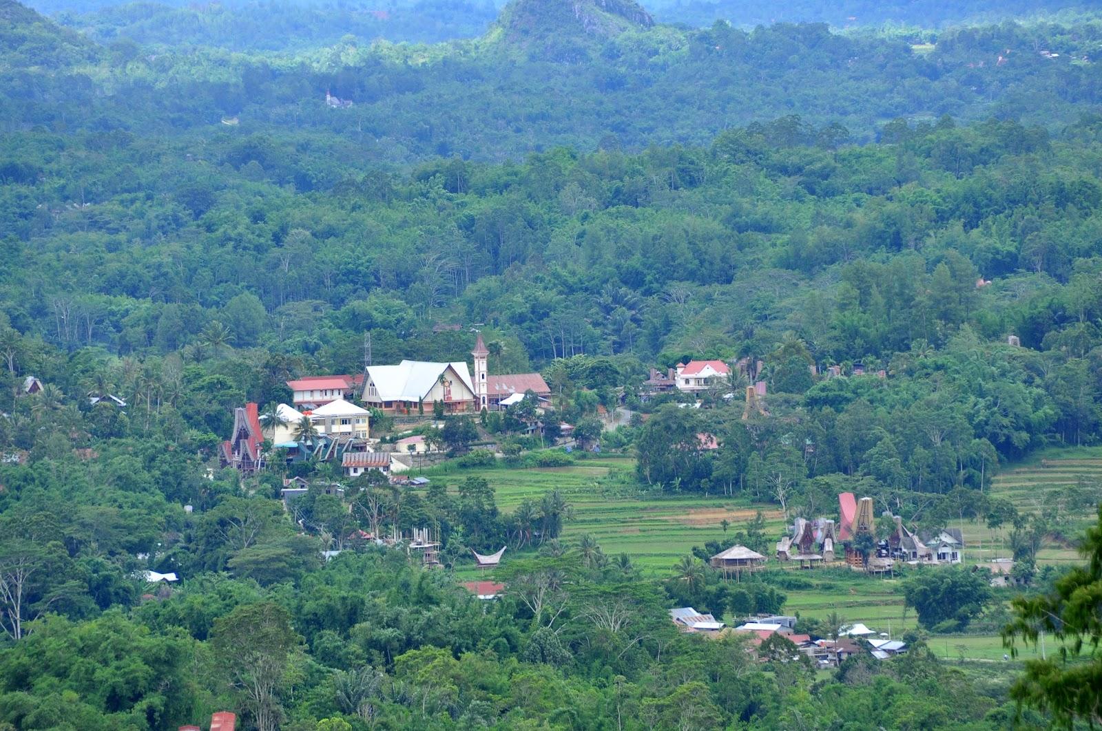 Sejarah Singkat Kampung Salu (1950 - 1968)