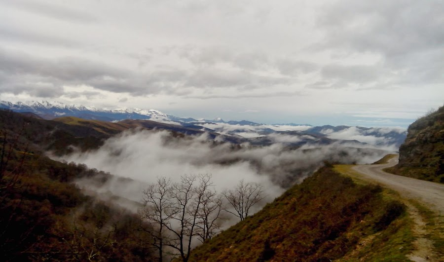 Vista-de-Picos-de-Europa-desde-la-Reserva-Natural-de-Saja