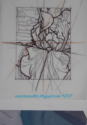 Blue Iris, 1st line drawing, simple quarter grid ©Tina M. Welter 2017