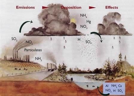 How acid rain is formed