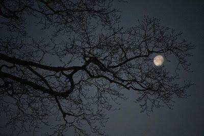 Mặt Trời, Gió, Mặt trăng...