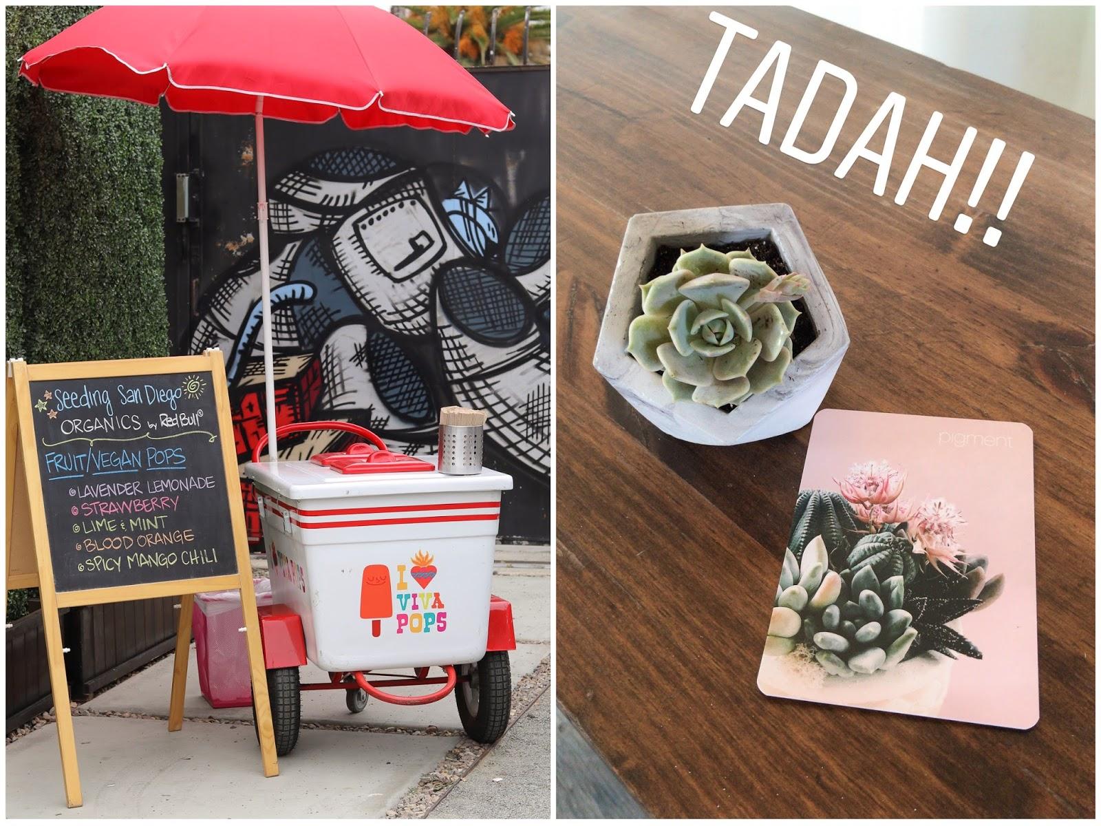viva pops cart, pigment succulent station, one bunk barrio