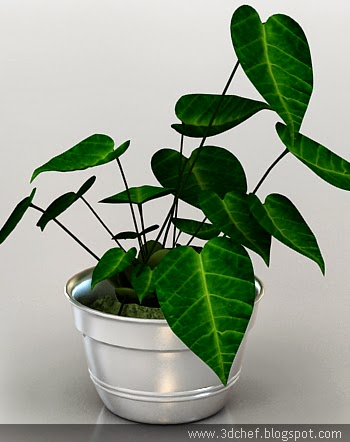 free 3d model garden plant