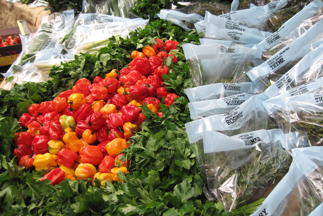 Borough Market Peppers and Herbs