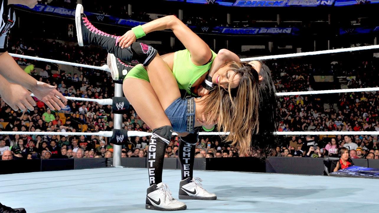 AJ-Nikki Bella-WWE-WWE Divas