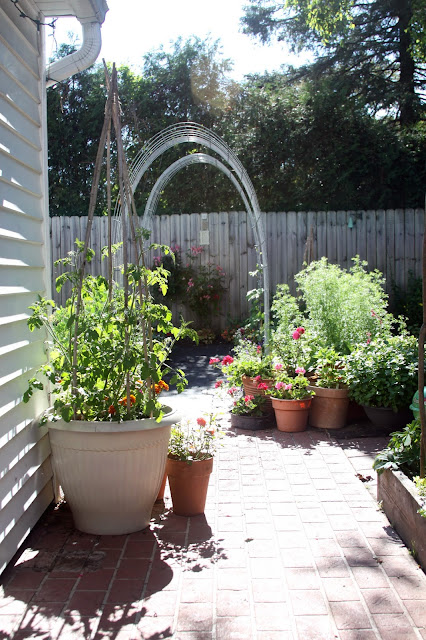 garden, gardening, container gardens, raised beds, Anne Butera, My Giant Strawberry