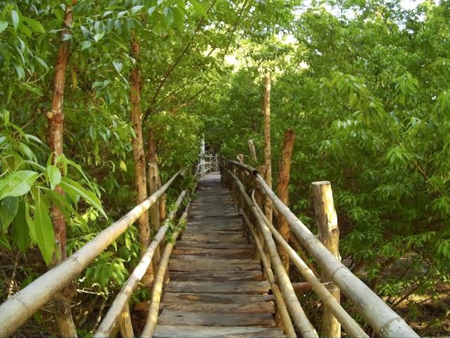 Guiwanon spring park - park wiszących mostów