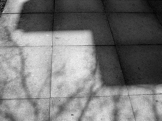 shadows, pavement, black and white, urban, photography,