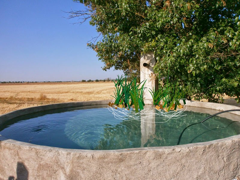 Cuanto cuesta el de una piscina id with cuanto cuesta el for Cuanto cuesta una piscina de cemento