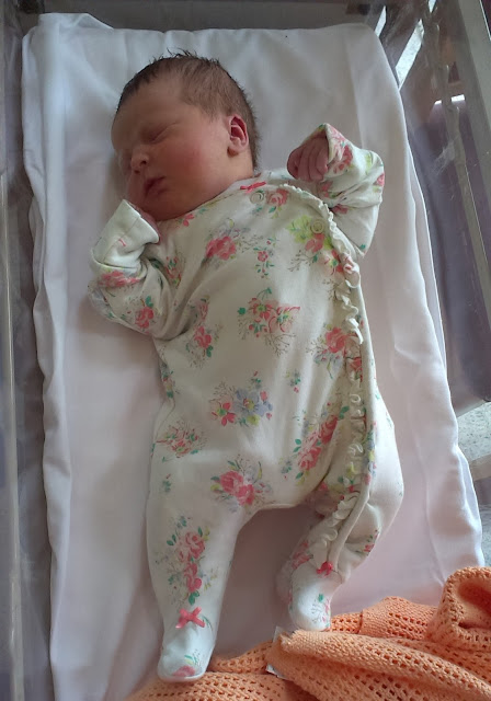 Lily at one day old