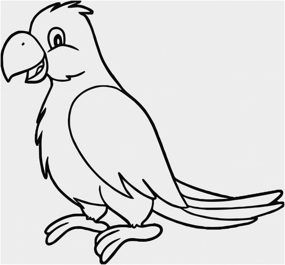 Tranh tô màu con Vẹt đang đi